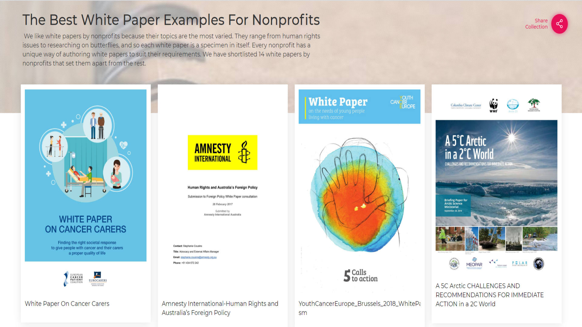 Best White Paper Examples for Nonprofits