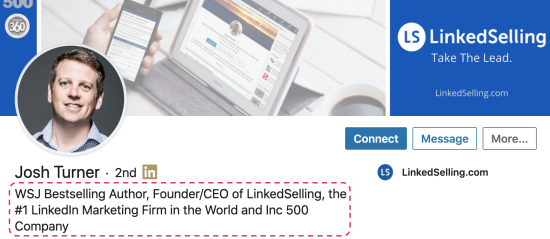 What is a professional headline in LinkedIn?